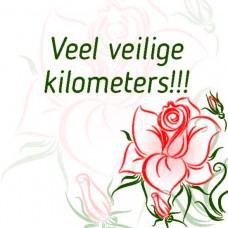 Veilige kilometers